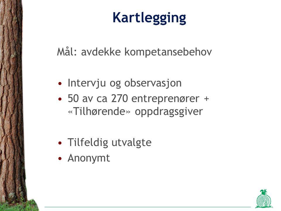 Kartlegging Mål: avdekke kompetansebehov Intervju og observasjon 50 av ca 270 entreprenører + «Tilhørende» oppdragsgiver Tilfeldig utvalgte Anonymt