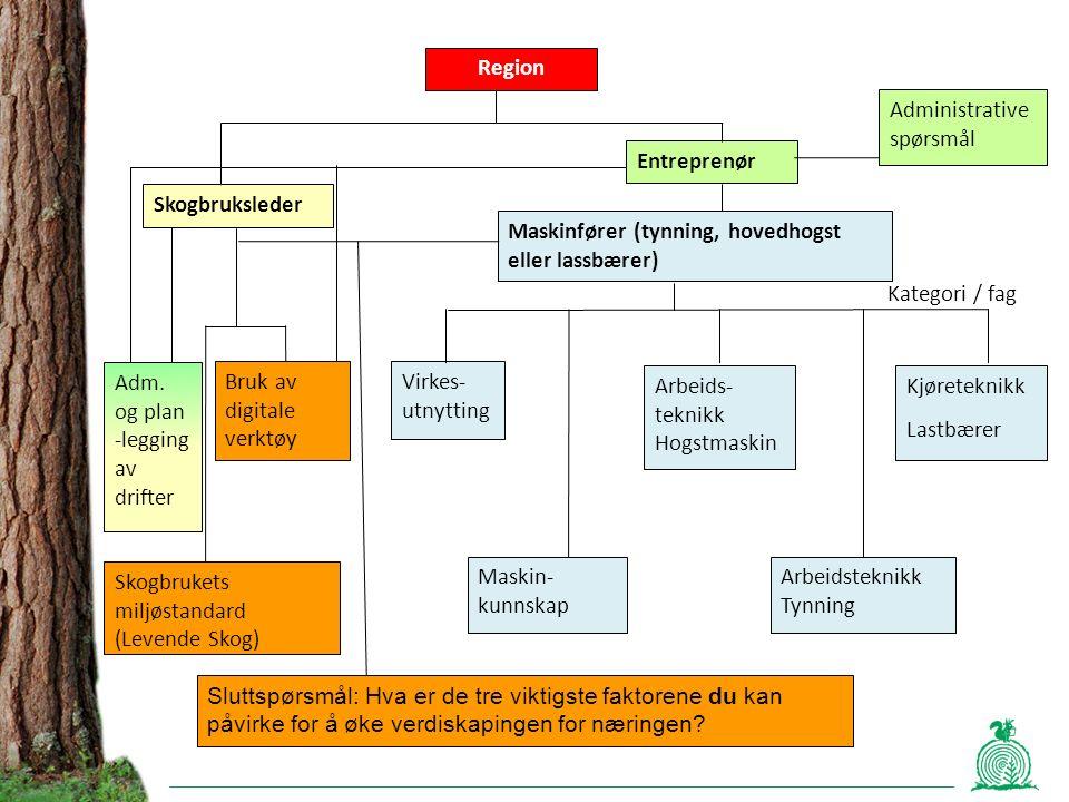 Adm. og plan -legging av drifter Skogbruksleder Entreprenør Region Maskinfører (tynning, hovedhogst eller lassbærer) Virkes- utnytting Maskin- kunnska