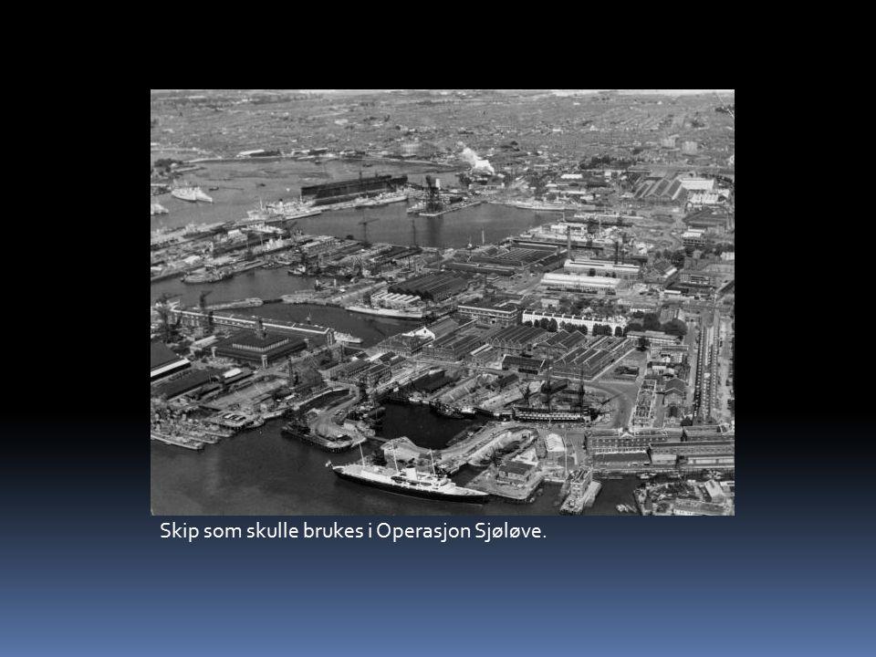 Skip som skulle brukes i Operasjon Sjøløve.