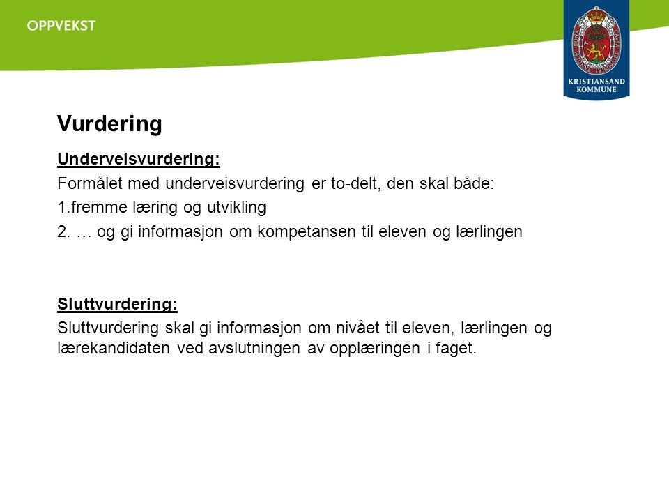 Vurdering Underveisvurdering: Formålet med underveisvurdering er to-delt, den skal både: 1.fremme læring og utvikling 2.