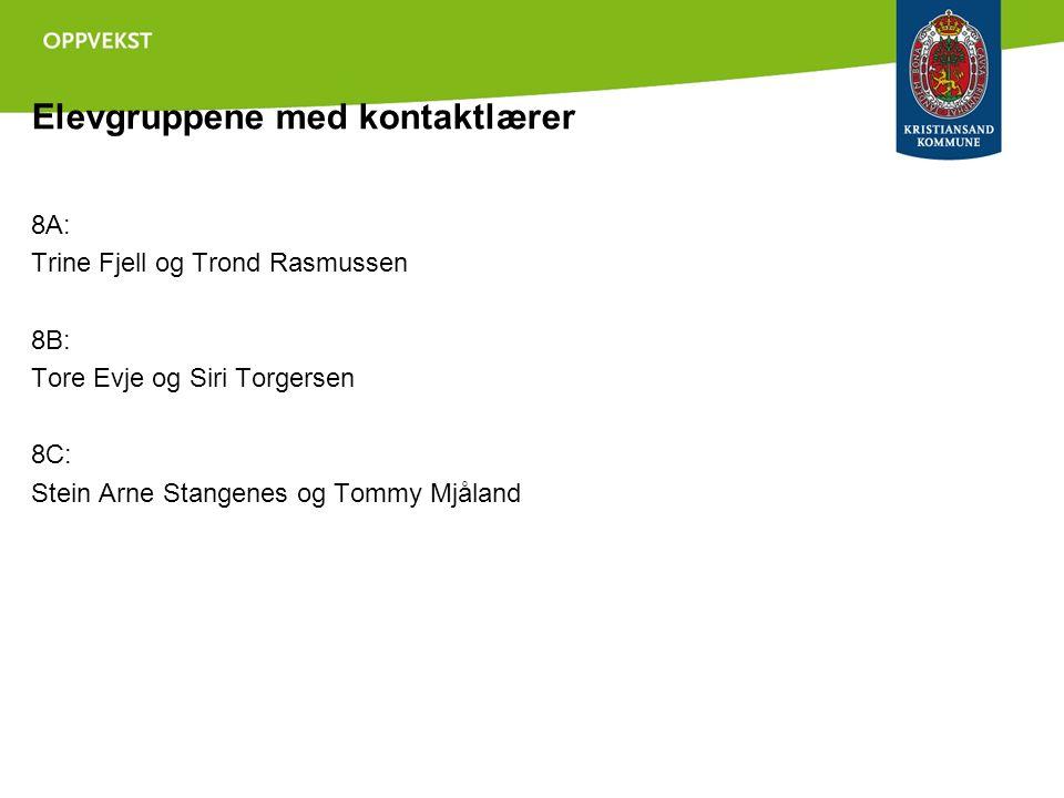 Elevgruppene med kontaktlærer 8A: Trine Fjell og Trond Rasmussen 8B: Tore Evje og Siri Torgersen 8C: Stein Arne Stangenes og Tommy Mjåland