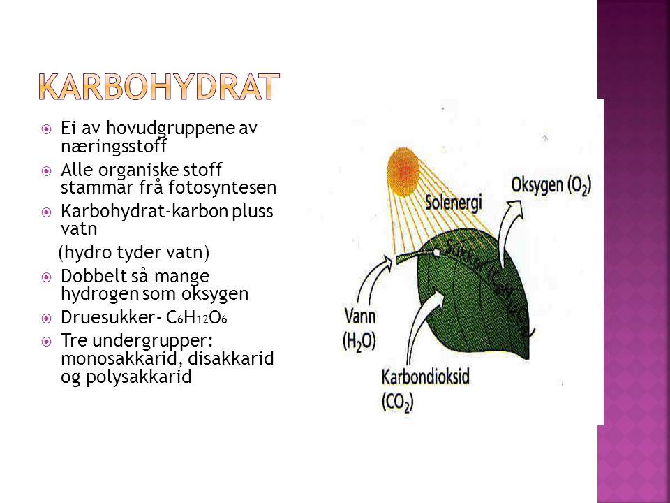  Ei av hovudgruppene av næringsstoff  Alle organiske stoff stammar frå fotosyntesen  Karbohydrat-karbon pluss vatn (hydro tyder vatn)  Dobbelt så mange hydrogen som oksygen  Druesukker- C 6 H 12 O 6  Tre undergrupper: monosakkarid, disakkarid og polysakkarid