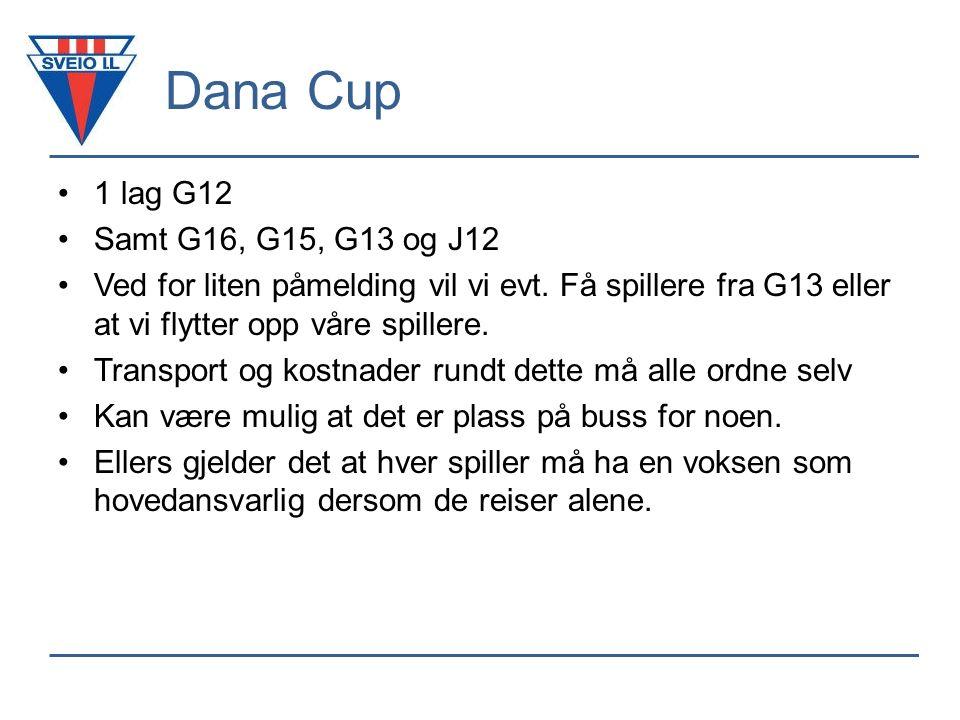 Dana Cup 1 lag G12 Samt G16, G15, G13 og J12 Ved for liten påmelding vil vi evt.