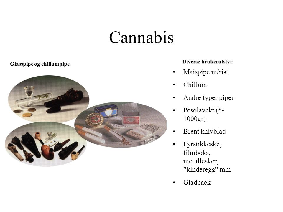 Blad fra Cannabis Sativa