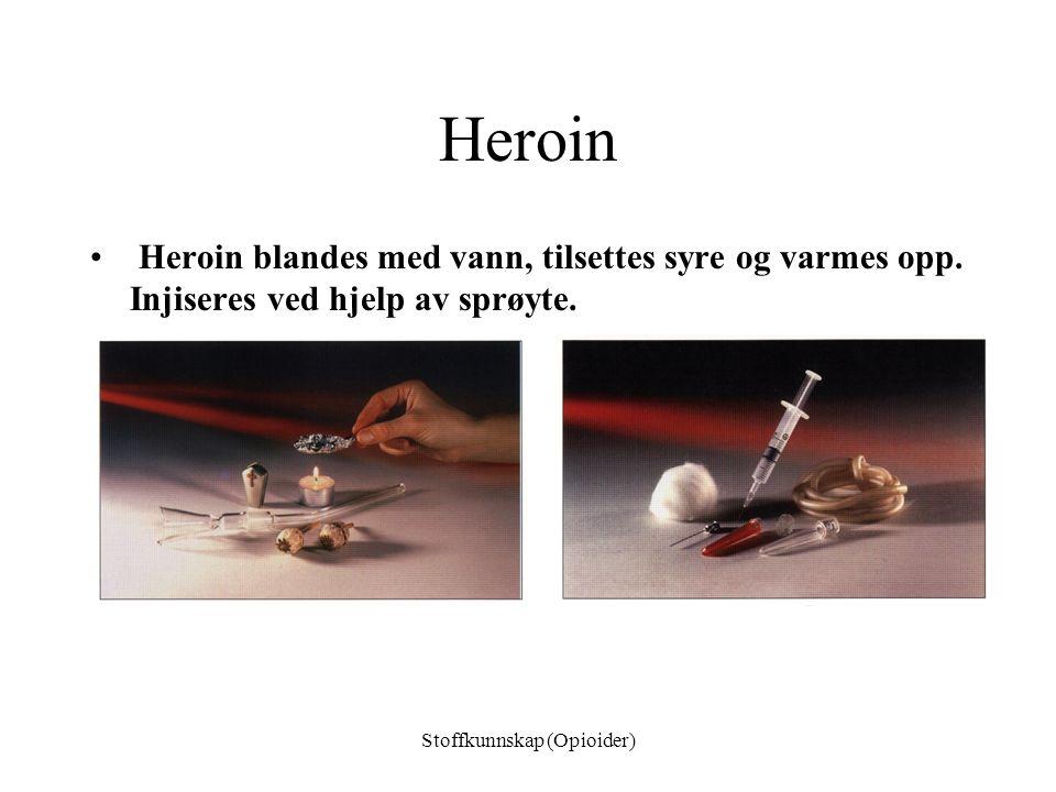 Opioider –Naturlige (opiater) Opium, morfin, kodein –Halvsyntetiske Heroin –Syntetiske opioider Metadon, petidin, fentanyl