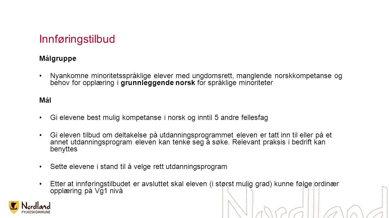 Innføringstilbud Målgruppe Nyankomne minoritetsspråklige elever med ungdomsrett, manglende norskkompetanse og behov for opplæring i grunnleggende nors