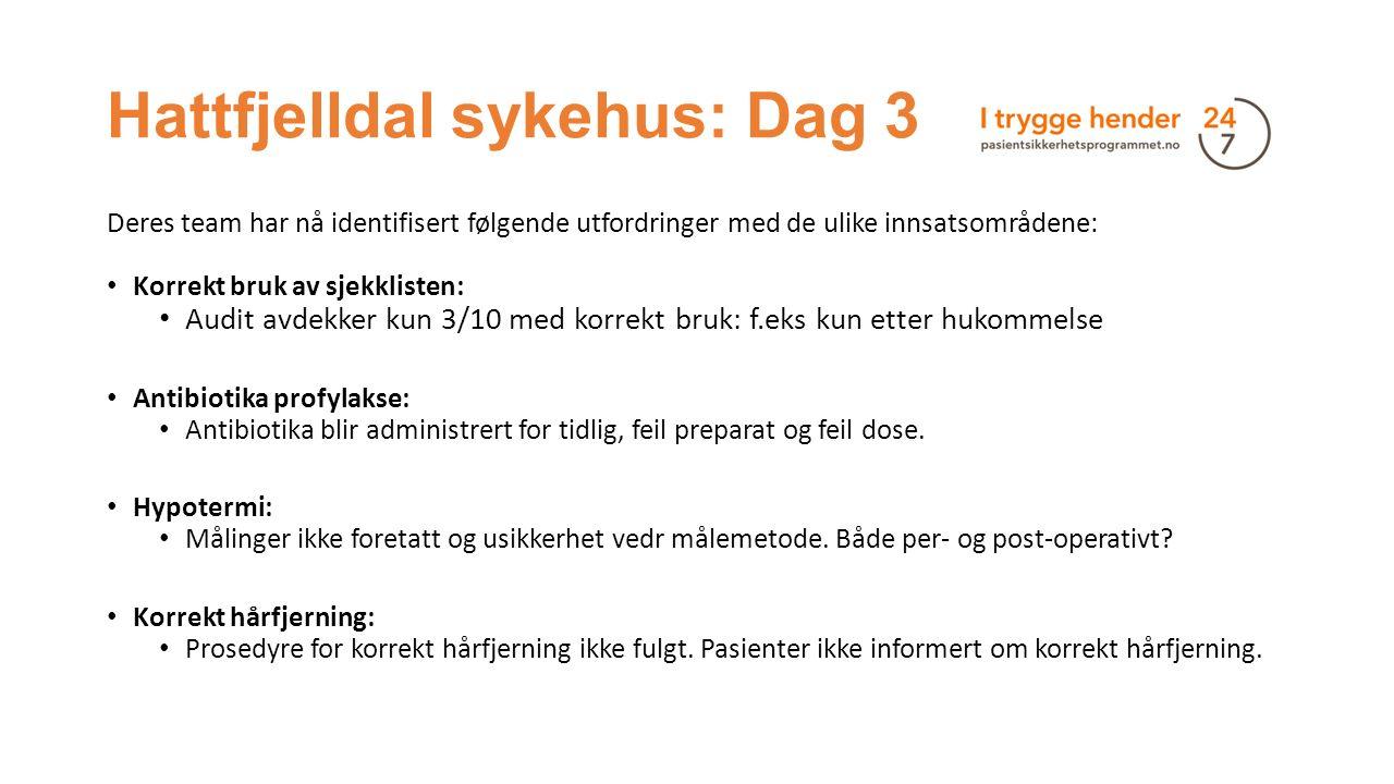 Hattfjelldal sykehus: Dag 3 Deres team har nå identifisert følgende utfordringer med de ulike innsatsområdene: Korrekt bruk av sjekklisten: Audit avde