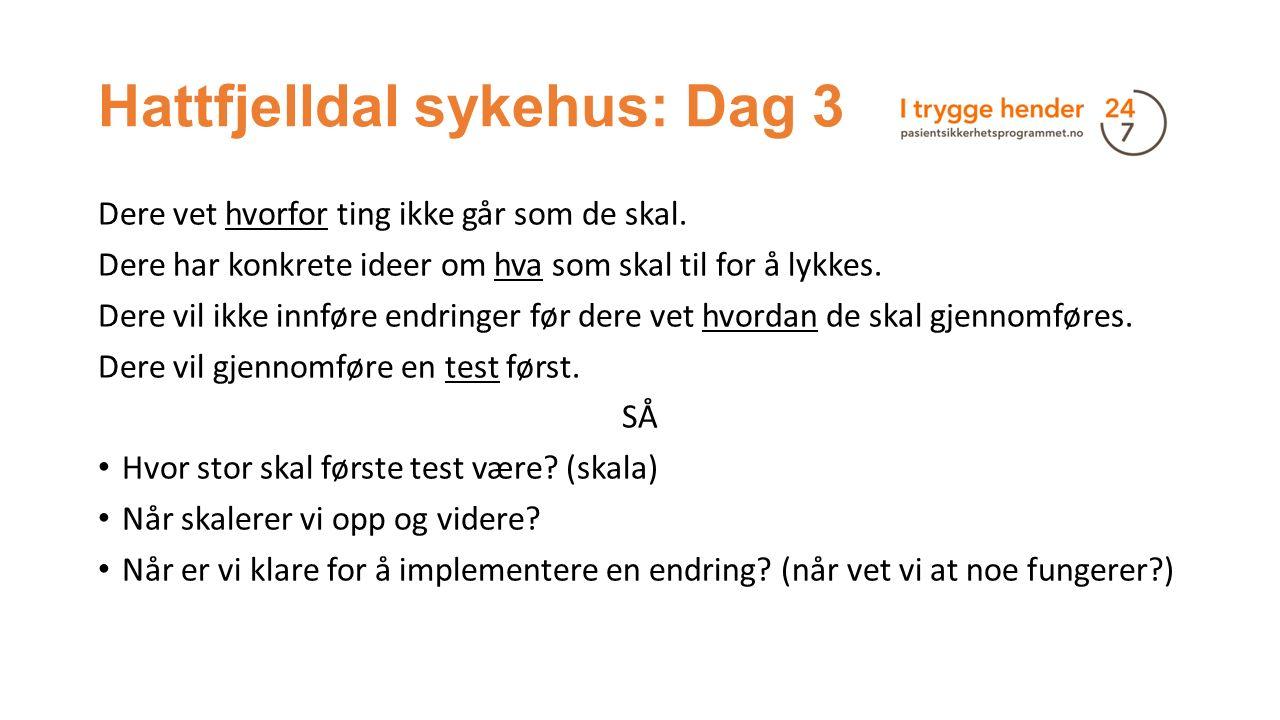 Hattfjelldal sykehus: Dag 3 Dere vet hvorfor ting ikke går som de skal.