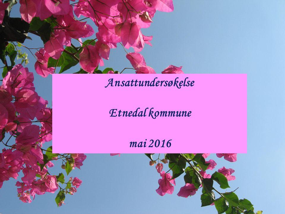 Ansattundersøkelse Etnedal kommune mai 2016