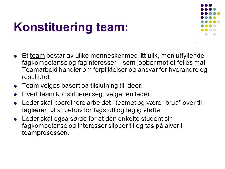 Konstituering team: Et team består av ulike mennesker med litt ulik, men utfyllende fagkompetanse og faginteresser – som jobber mot et felles mål.