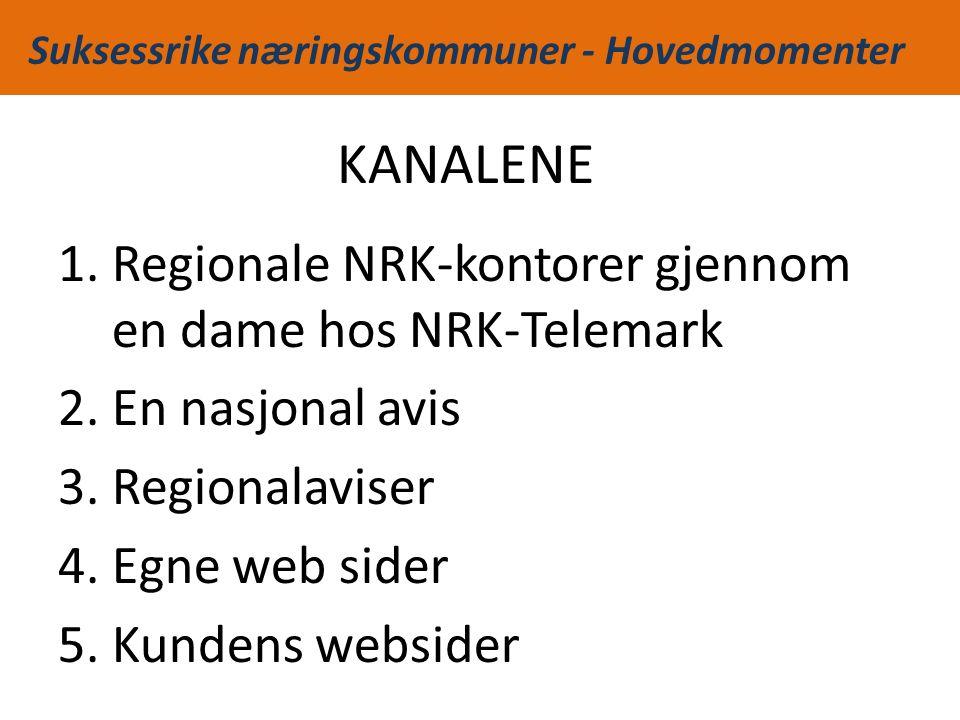 Suksessrike næringskommuner - Hovedmomenter KANALENE 1.Regionale NRK-kontorer gjennom en dame hos NRK-Telemark 2.En nasjonal avis 3.Regionalaviser 4.Egne web sider 5.Kundens websider