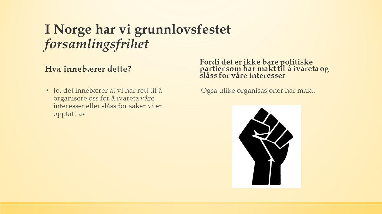 I Norge har vi grunnlovsfestet forsamlingsfrihet Hva innebærer dette.