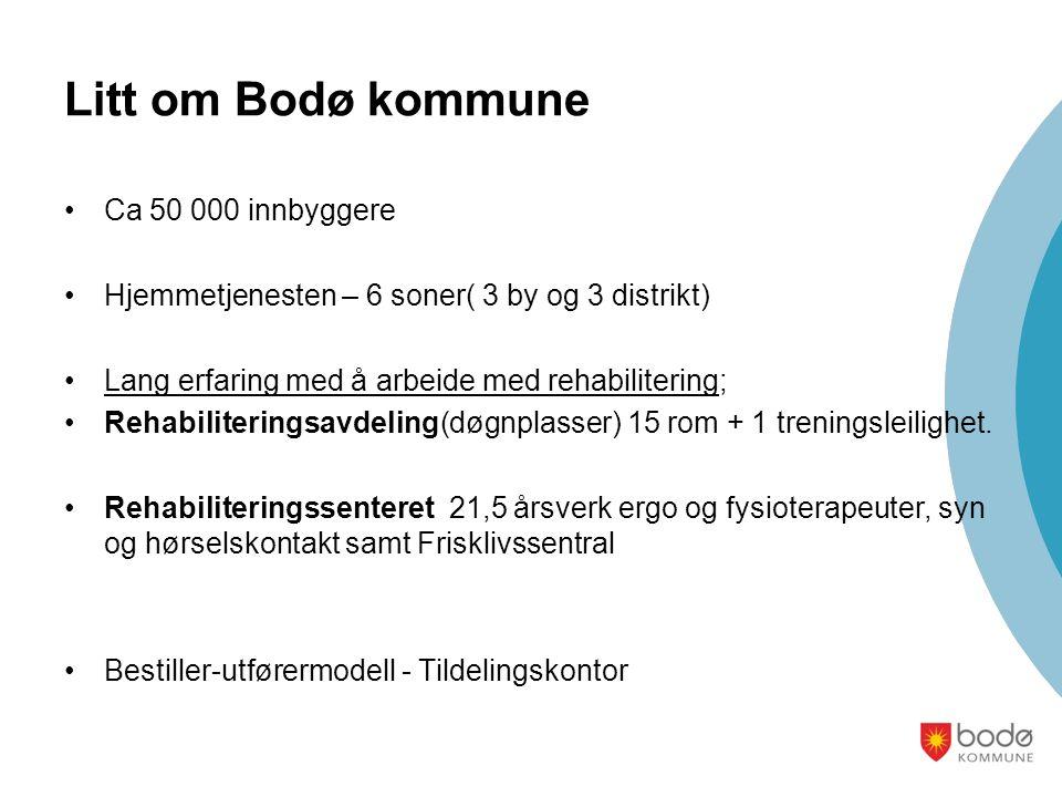 Litt om Bodø kommune Ca 50 000 innbyggere Hjemmetjenesten – 6 soner( 3 by og 3 distrikt) Lang erfaring med å arbeide med rehabilitering; Rehabiliteringsavdeling(døgnplasser) 15 rom + 1 treningsleilighet.