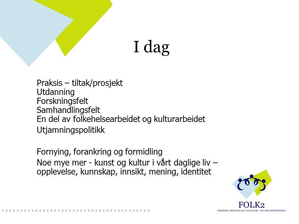 I dag Praksis – tiltak/prosjekt Utdanning Forskningsfelt Samhandlingsfelt En del av folkehelsearbeidet og kulturarbeidet Utjamningspolitikk Fornying,