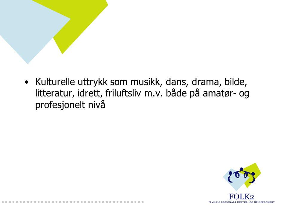 Kulturelle uttrykk som musikk, dans, drama, bilde, litteratur, idrett, friluftsliv m.v.