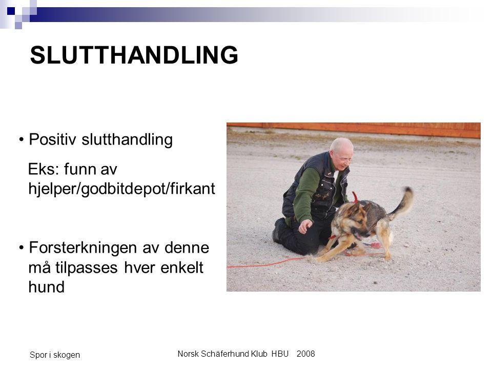 Norsk Schäferhund Klub HBU 2008 Spor i skogen SLUTTHANDLING Positiv slutthandling Eks: funn av hjelper/godbitdepot/firkant Forsterkningen av denne må tilpasses hver enkelt hund