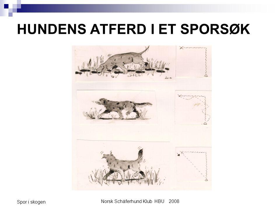 Norsk Schäferhund Klub HBU 2008 Spor i skogen HUNDENS ATFERD I ET SPORSØK
