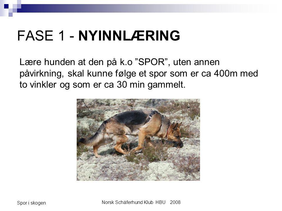 Norsk Schäferhund Klub HBU 2008 Spor i skogen FASE 1 - NYINNLÆRING Lære hunden at den på k.o SPOR , uten annen påvirkning, skal kunne følge et spor som er ca 400m med to vinkler og som er ca 30 min gammelt.