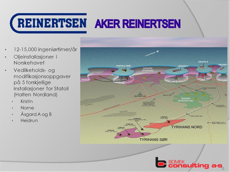 12-15.000 ingeniørtimer/år Oljeinstallasjoner i Norskehavet Vedlikeholds- og modifikasjonsoppgaver på 5 forskjellige installasjoner for Statoil (Halten Nordland) Kristin Norne Åsgard A og B Heidrun 12