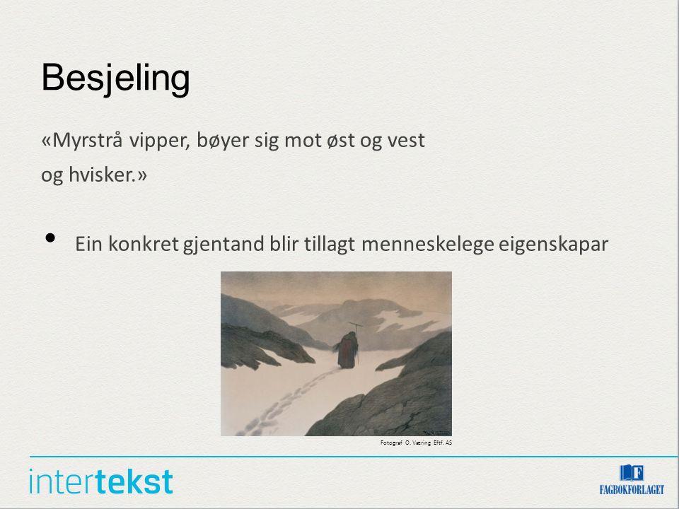 Besjeling «Myrstrå vipper, bøyer sig mot øst og vest og hvisker.» Ein konkret gjentand blir tillagt menneskelege eigenskapar Fotograf O. Væring Eftf.