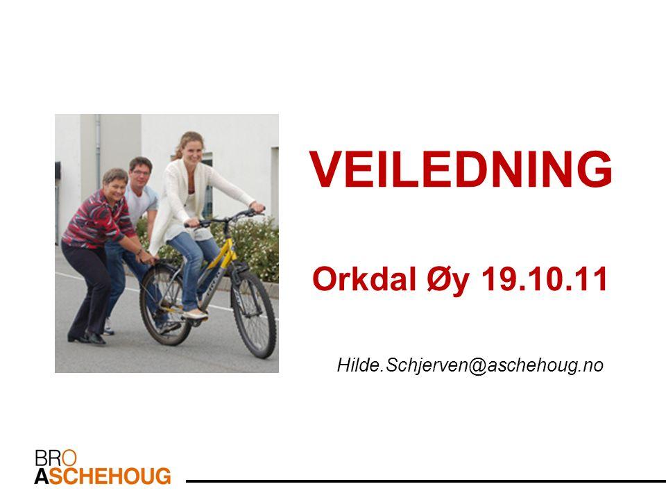 VEILEDNING Orkdal Øy 19.10.11 Hilde.Schjerven@aschehoug.no