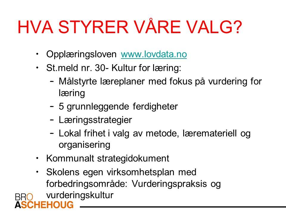 HVA STYRER VÅRE VALG. Opplæringsloven www.lovdata.nowww.lovdata.no St.meld nr.