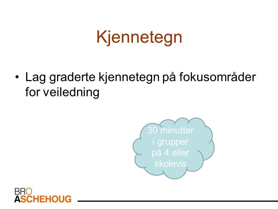 Kjennetegn Lag graderte kjennetegn på fokusområder for veiledning 30 minutter i grupper på 4 eller skolevis