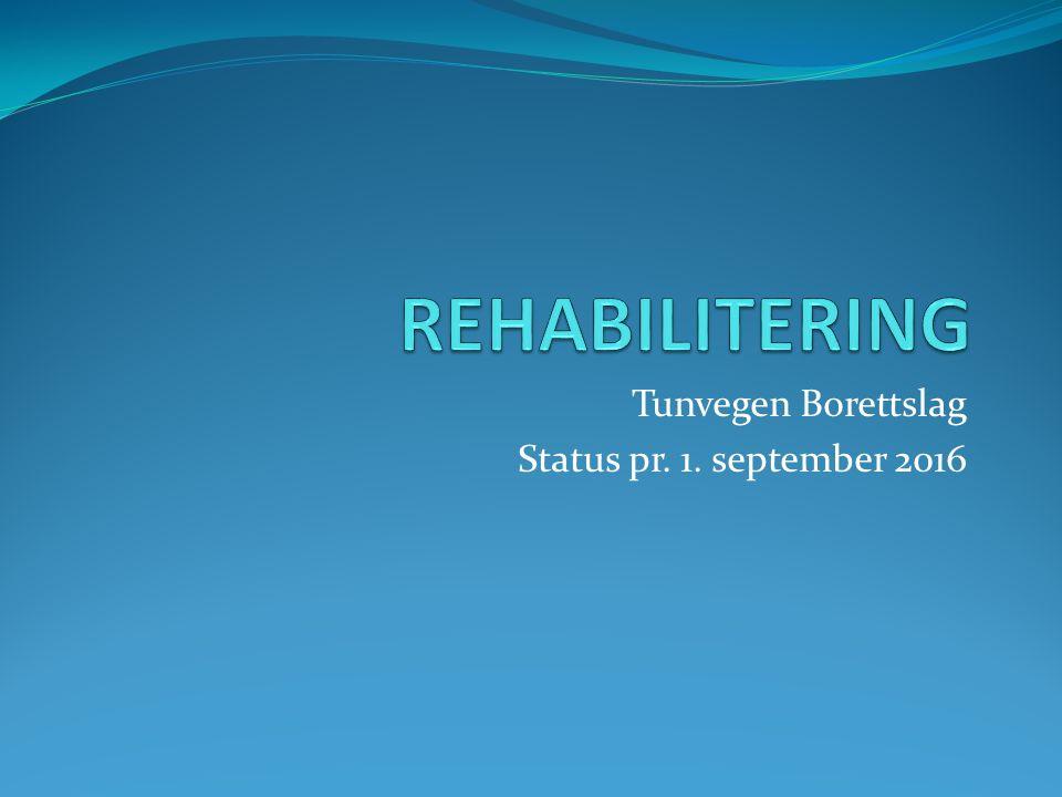 Tunvegen Borettslag Status pr. 1. september 2016