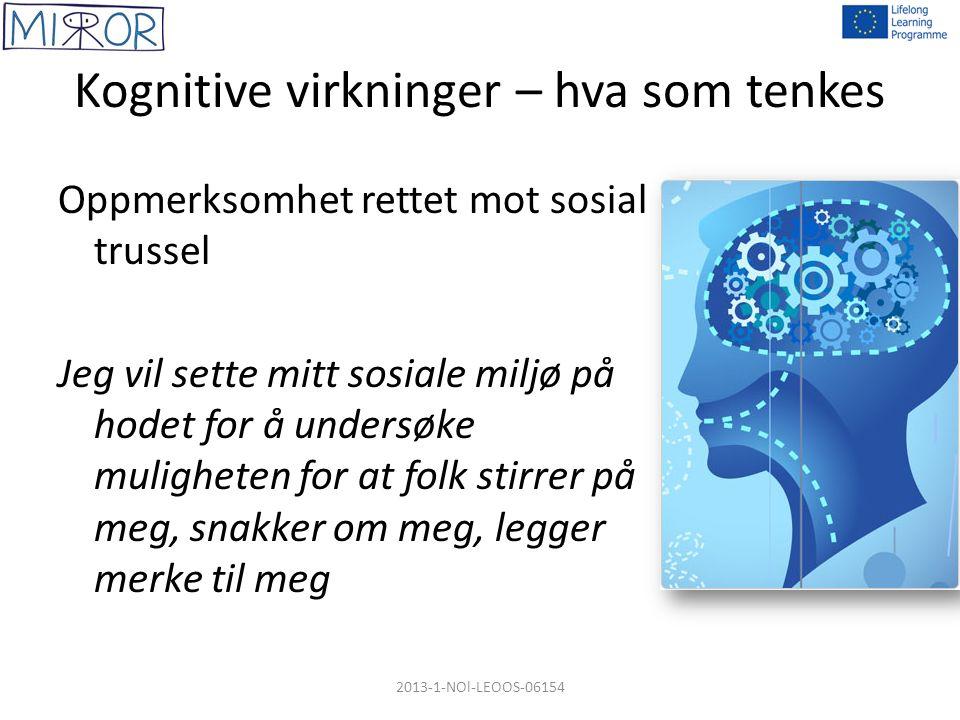 Kognitive virkninger – hva som tenkes Oppmerksomhet rettet mot sosial trussel Jeg vil sette mitt sosiale miljø på hodet for å undersøke muligheten for at folk stirrer på meg, snakker om meg, legger merke til meg 2013-1-NOl-LEOOS-06154