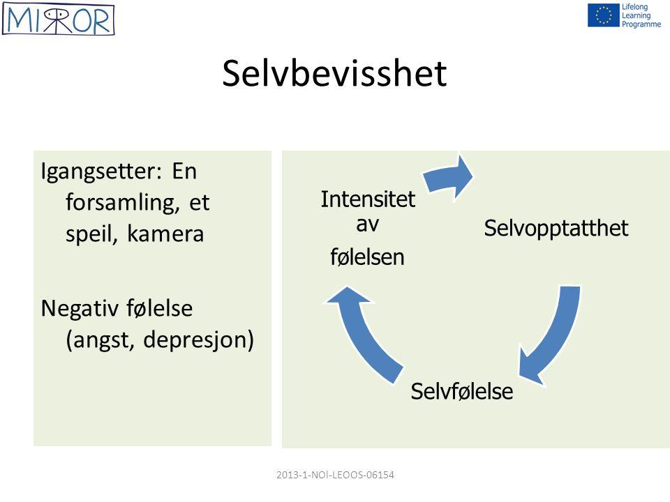 Selvbevisshet Igangsetter: En forsamling, et speil, kamera Negativ følelse (angst, depresjon) Selvopptatthet Selvfølelse Intensitet av følelsen 2013-1-NOl-LEOOS-06154