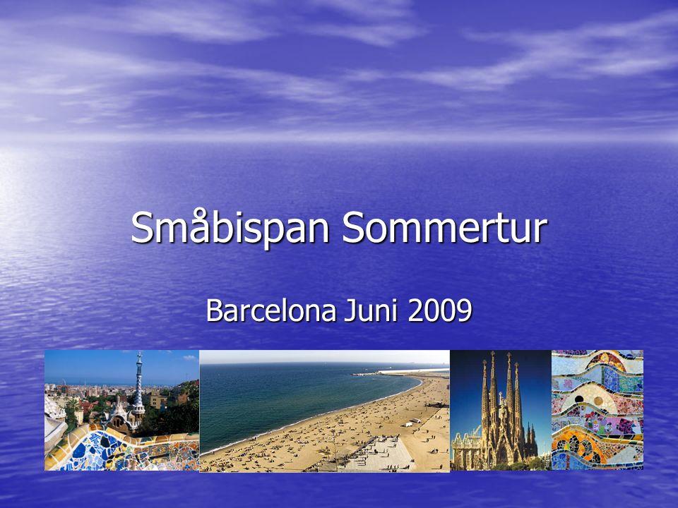 Småbispan Sommertur Barcelona Juni 2009
