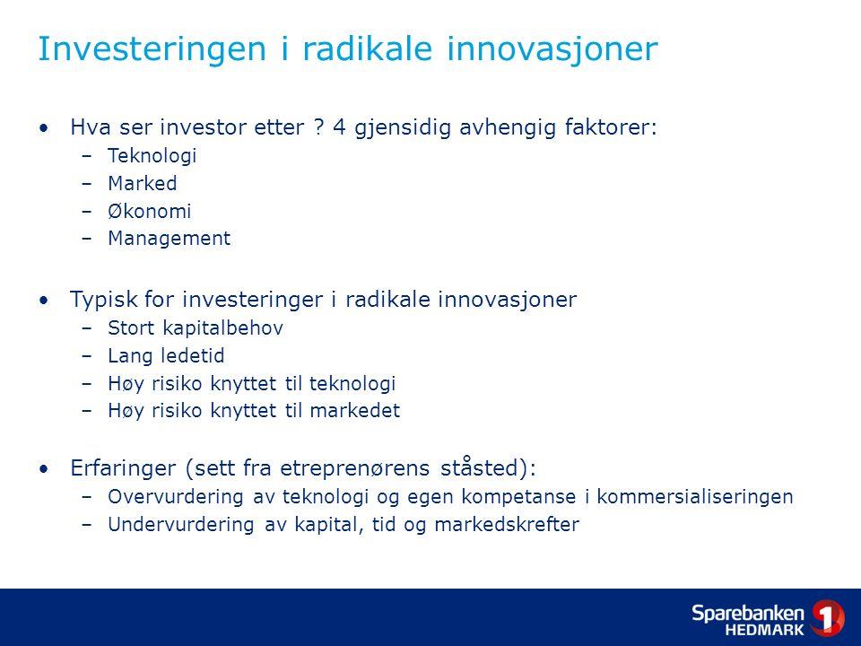 Investeringen i radikale innovasjoner Hva ser investor etter .
