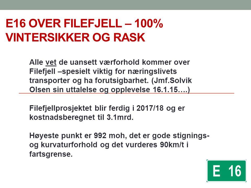 E16 OVER FILEFJELL – 100% VINTERSIKKER OG RASK Alle vet de uansett værforhold kommer over Filefjell –spesielt viktig for næringslivets transporter og ha forutsigbarhet.