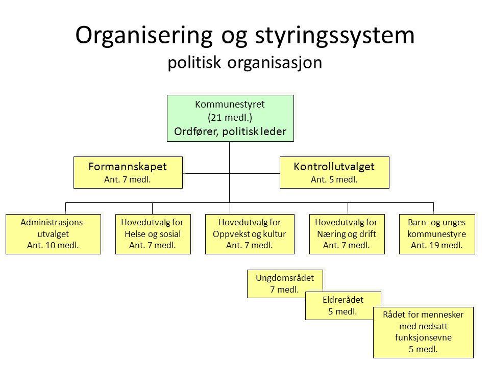 Organisering og styringssystem politisk organisasjon Ungdomsrådet 7 medl.