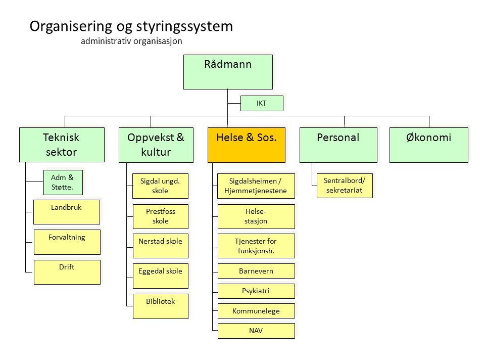 Organisering og styringssystem administrativ organisasjon Rådmann Oppvekst & kultur Teknisk sektor Økonomi Drift Landbruk Forvaltning IKT Adm & Støtte.