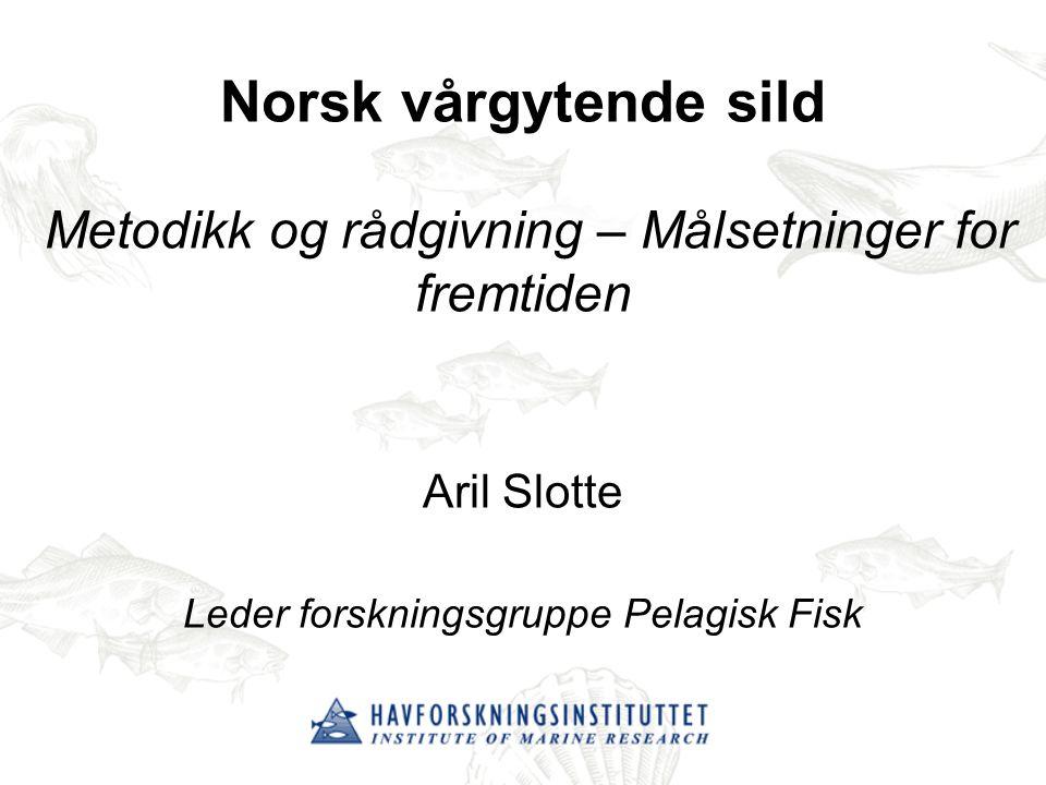 Norsk vårgytende sild Metodikk og rådgivning – Målsetninger for fremtiden Aril Slotte Leder forskningsgruppe Pelagisk Fisk