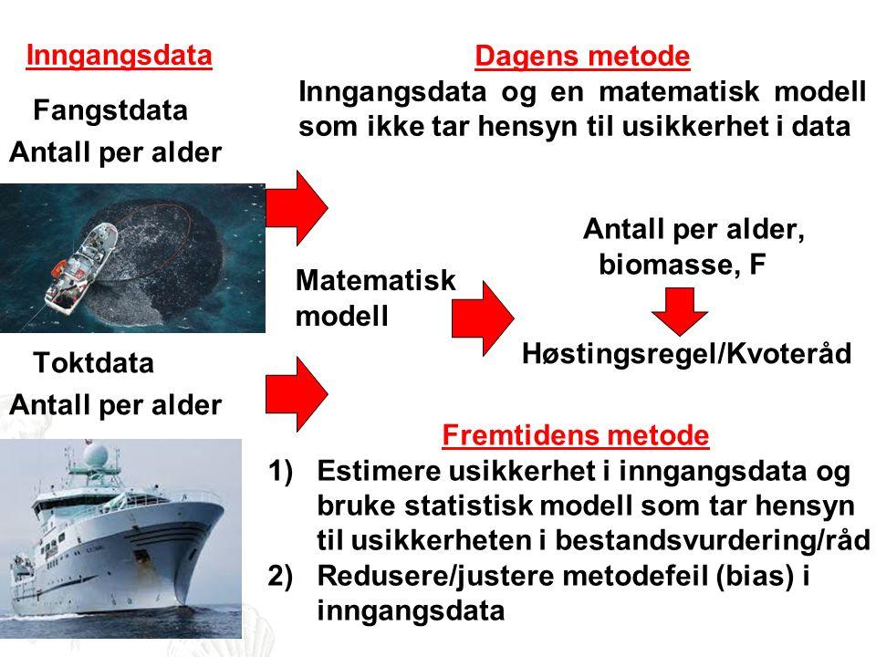 Matematisk modell Fangstdata Antall per alder Toktdata Antall per alder Antall per alder, biomasse, F Dagens metode Inngangsdata og en matematisk modell som ikke tar hensyn til usikkerhet i data Fremtidens metode 1)Estimere usikkerhet i inngangsdata og bruke statistisk modell som tar hensyn til usikkerheten i bestandsvurdering/råd 2)Redusere/justere metodefeil (bias) i inngangsdata Høstingsregel/Kvoteråd Inngangsdata