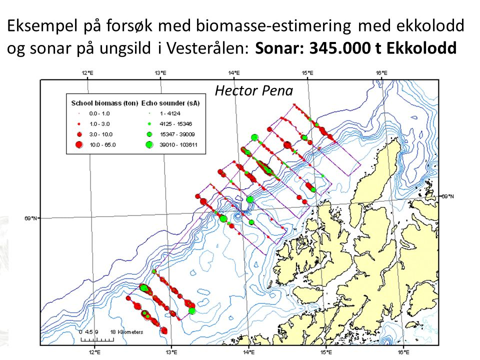 Eksempel på forsøk med biomasse-estimering med ekkolodd og sonar på ungsild i Vesterålen: Sonar: 345.000 t Ekkolodd 114.000 t Hector Pena