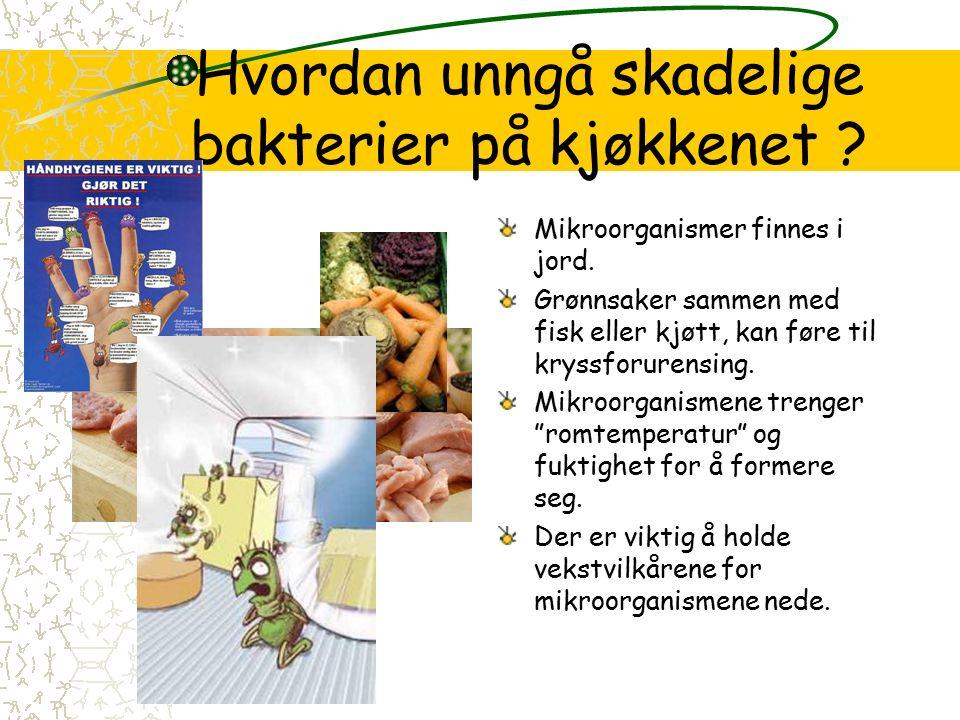 Hvordan unngå skadelige bakterier på kjøkkenet . Mikroorganismer finnes i jord.