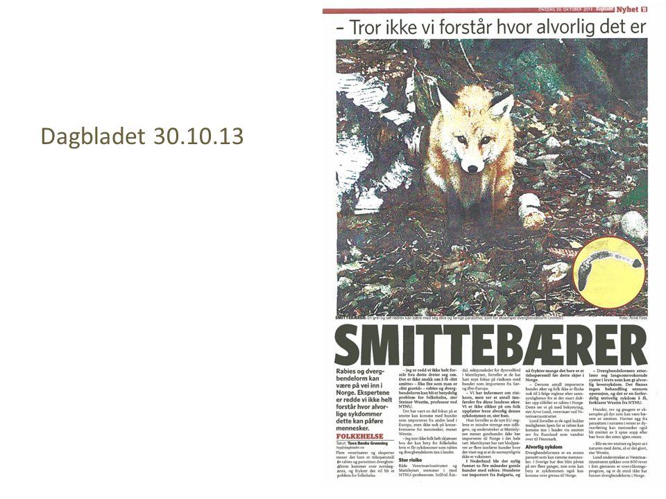 Dagbladet 30.10.13