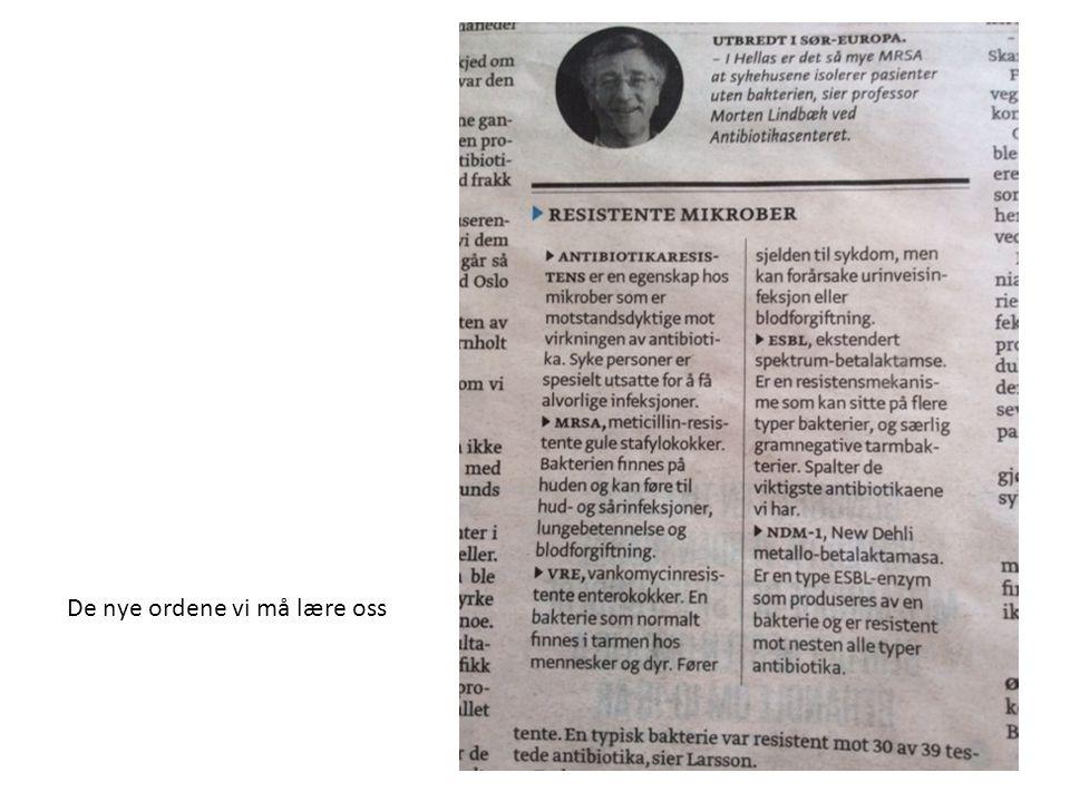 Fra: Aftenposten Innsikt