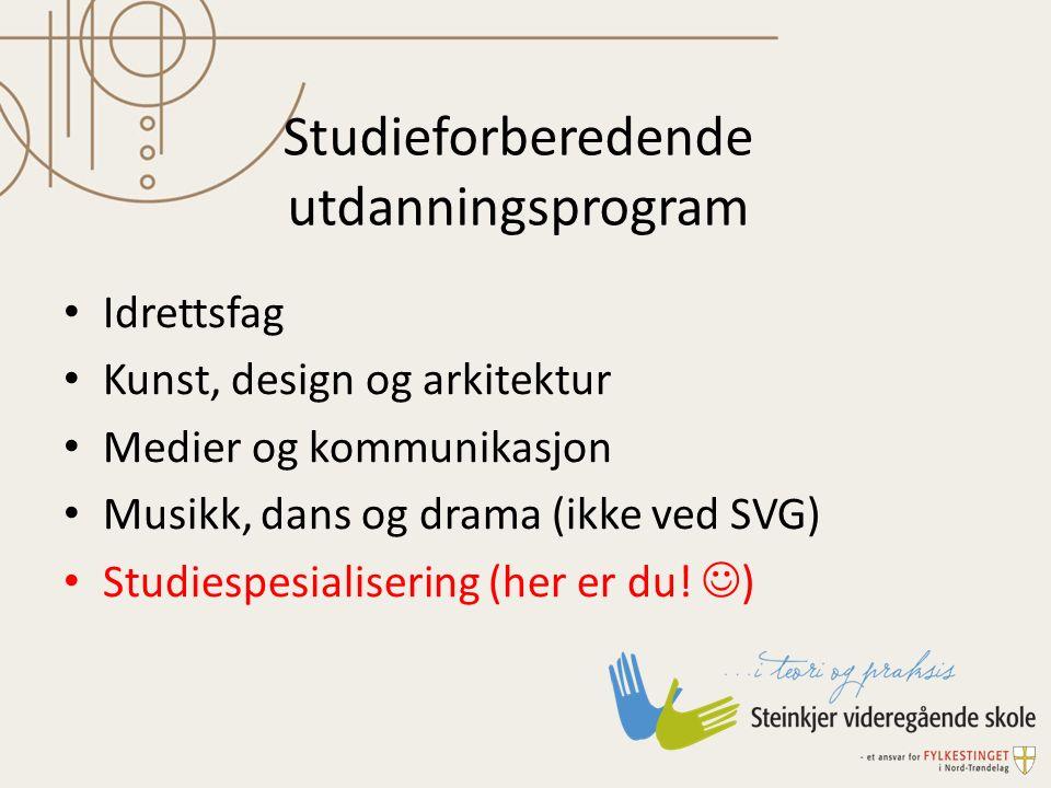 Studieforberedende utdanningsprogram Idrettsfag Kunst, design og arkitektur Medier og kommunikasjon Musikk, dans og drama (ikke ved SVG) Studiespesial