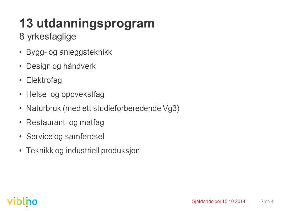 Gjeldende per 15.10.2014Side 4 13 utdanningsprogram 8 yrkesfaglige Bygg- og anleggsteknikk Design og håndverk Elektrofag Helse- og oppvekstfag Naturbr