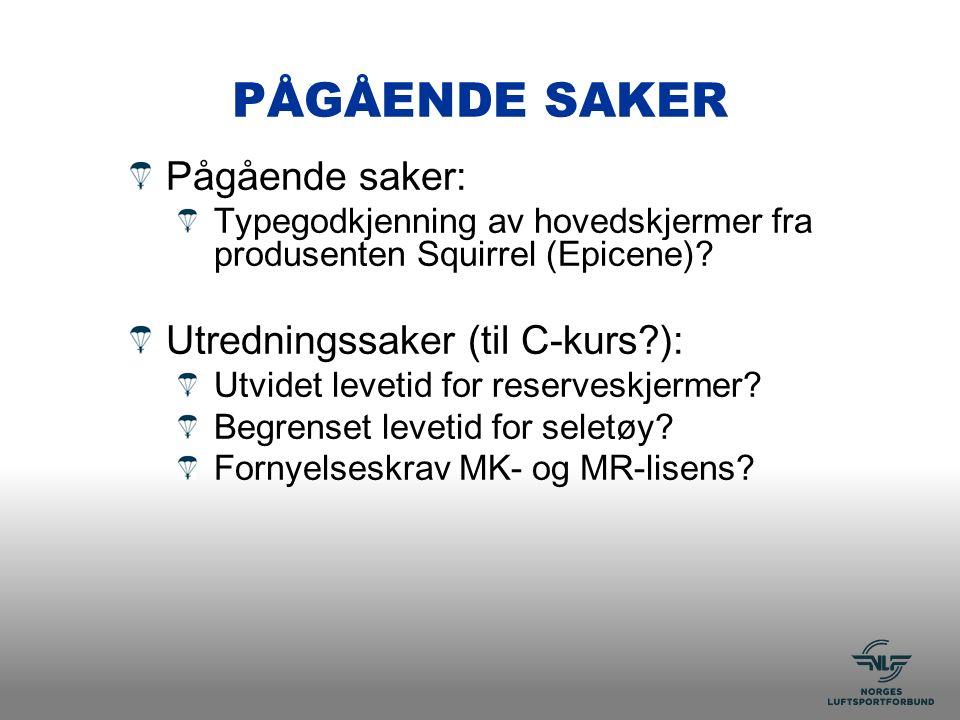 PÅGÅENDE SAKER Pågående saker: Typegodkjenning av hovedskjermer fra produsenten Squirrel (Epicene).
