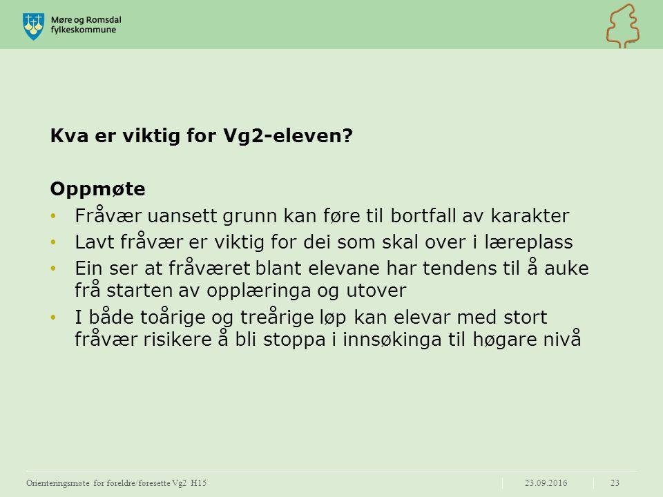 Kva er viktig for Vg2-eleven.