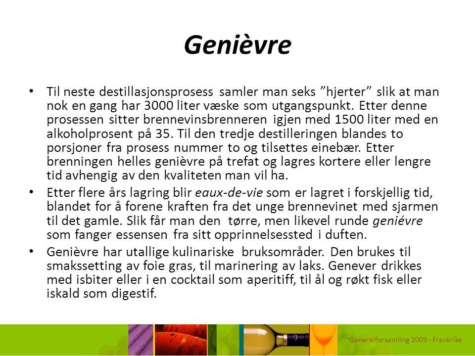 """Genièvre Til neste destillasjonsprosess samler man seks """"hjerter"""" slik at man nok en gang har 3000 liter væske som utgangspunkt. Etter denne prosessen"""