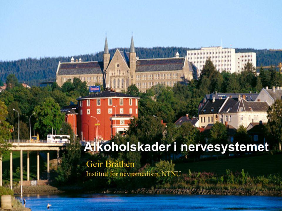 1 Alkoholskader i nervesystemet Geir Bråthen Institutt for nevromedisin, NTNU