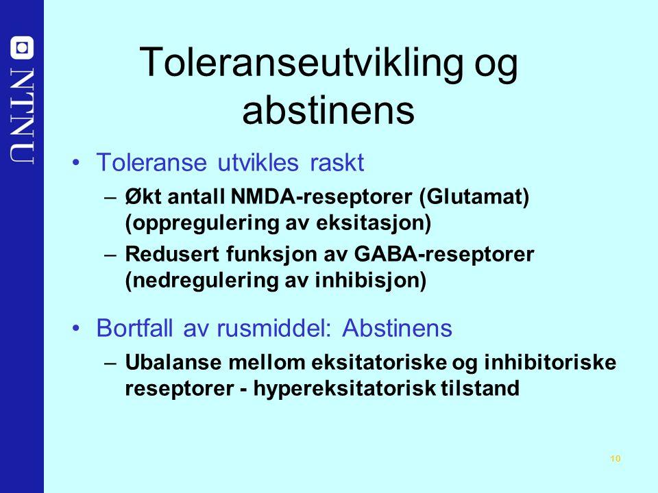 10 Toleranseutvikling og abstinens Toleranse utvikles raskt –Økt antall NMDA-reseptorer (Glutamat) (oppregulering av eksitasjon) –Redusert funksjon av GABA-reseptorer (nedregulering av inhibisjon) Bortfall av rusmiddel: Abstinens –Ubalanse mellom eksitatoriske og inhibitoriske reseptorer - hypereksitatorisk tilstand