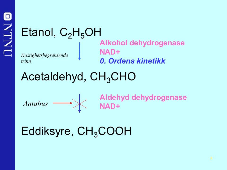 5 Etanol, C 2 H 5 OH Hastighetsbegrensende trinn Acetaldehyd, CH 3 CHO Eddiksyre, CH 3 COOH Alkohol dehydrogenase NAD+ 0.