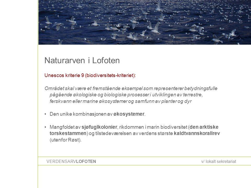 Naturarven i Lofoten VERDENSARVLOFOTENv/ lokalt sekretariat Unescos kriterie 9 (biodiversitets-kriteriet): Området skal være et fremstående eksempel som representerer betydningsfulle pågående økologiske og biologiske prosesser i utviklingen av terrestre, ferskvann eller marine økosystemer og samfunn av planter og dyr Den unike kombinasjonen av økosystemer.